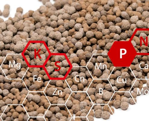 Glatt_PHOS4green_Phosphate_Containing_Fertilizer